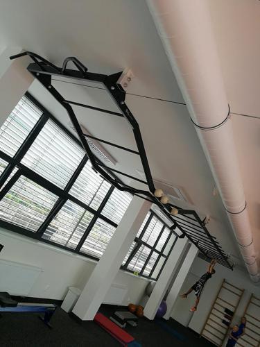 Stropní ručkovací žebříky, workout konstrukce, TRX
