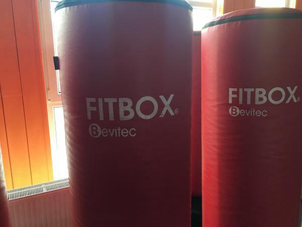 Prodáme originální Fitbox totémy