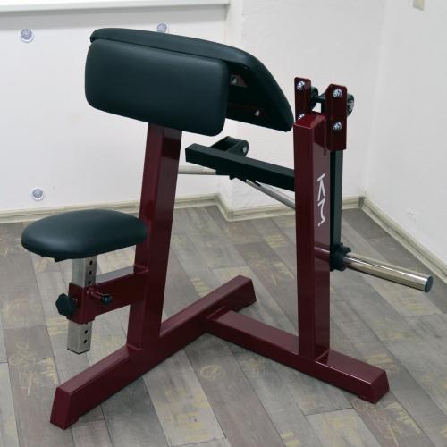 Biceps v sedě s kotoučovou zátěží (profi)