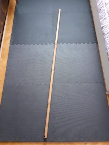 Ratanová hůl