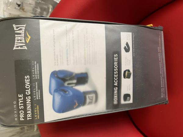 Boxerské rukavice Everlast NOVÉ